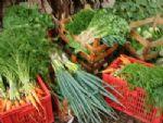 Horticultura orgânica é tema de reuniões em Ivinhema e em Dourados