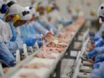 Japão suspende importação de carne de frigoríficos alvos de investigação